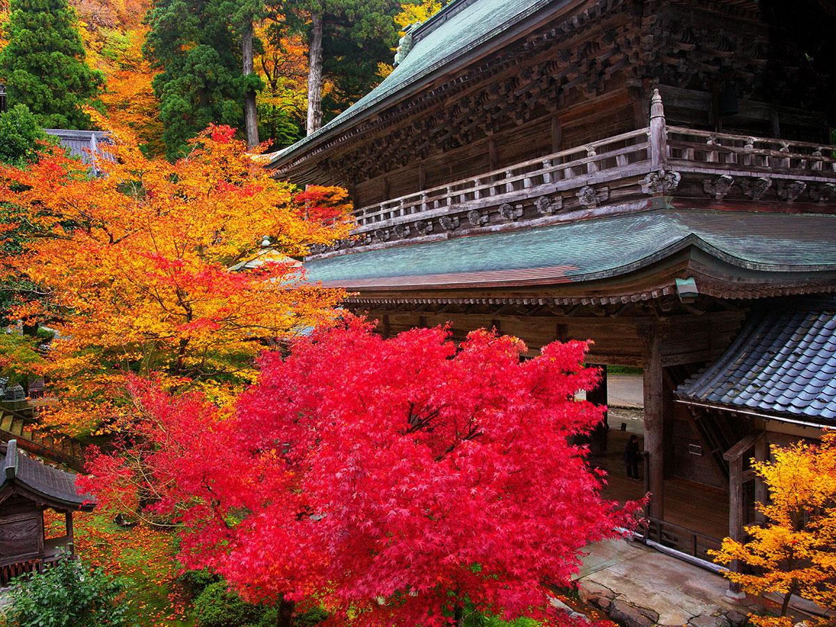 Templo Soto Zen Daihonzan Eiheiji_3