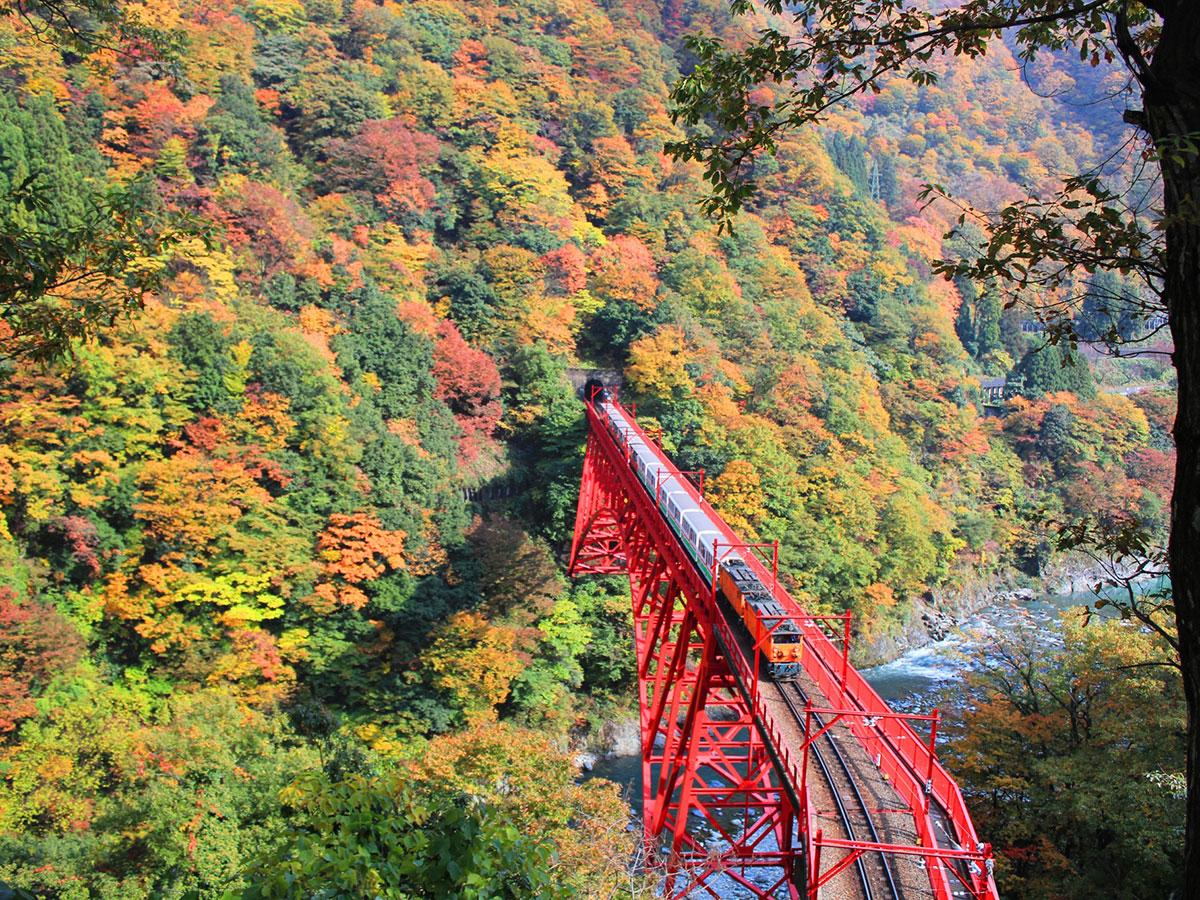 Kurobe Gorge Railway_1