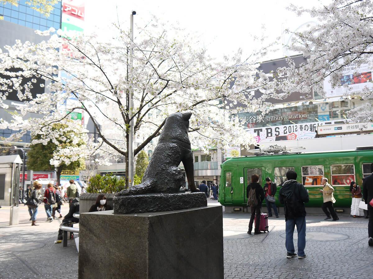 Shibuya_4