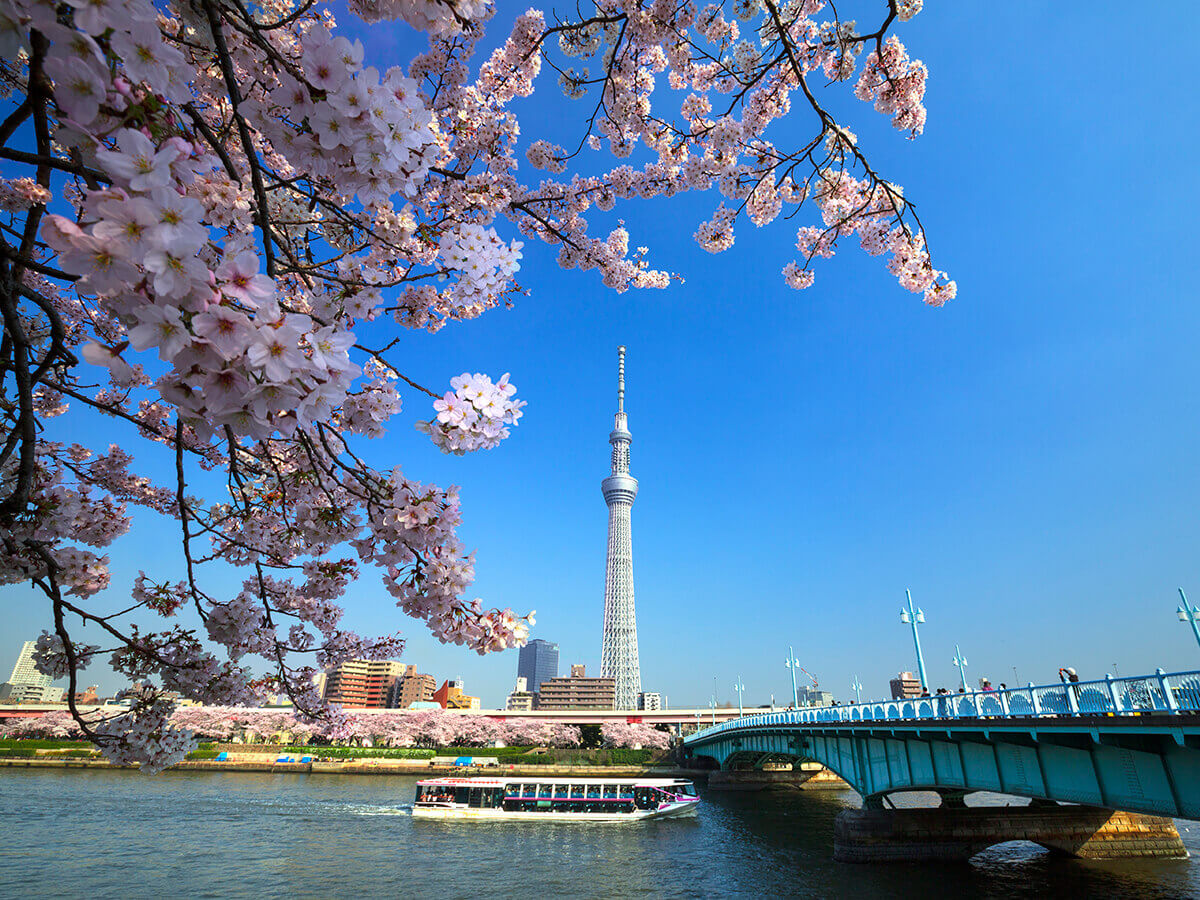 东京水上巴士  隅田川线