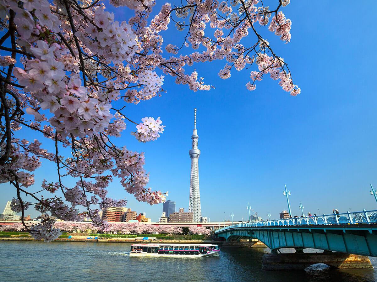 Crucero de TokyoLínea Sumidagawa