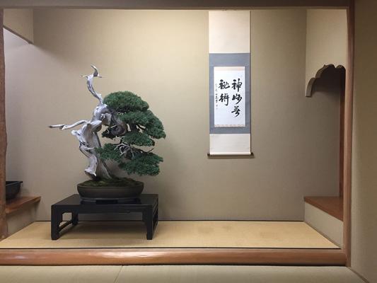 Museo de BONSAI Shunka-En _2