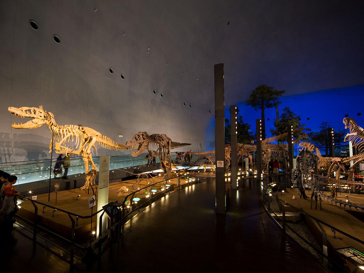 Musée préfectoral des dinosaures de Fukui_1