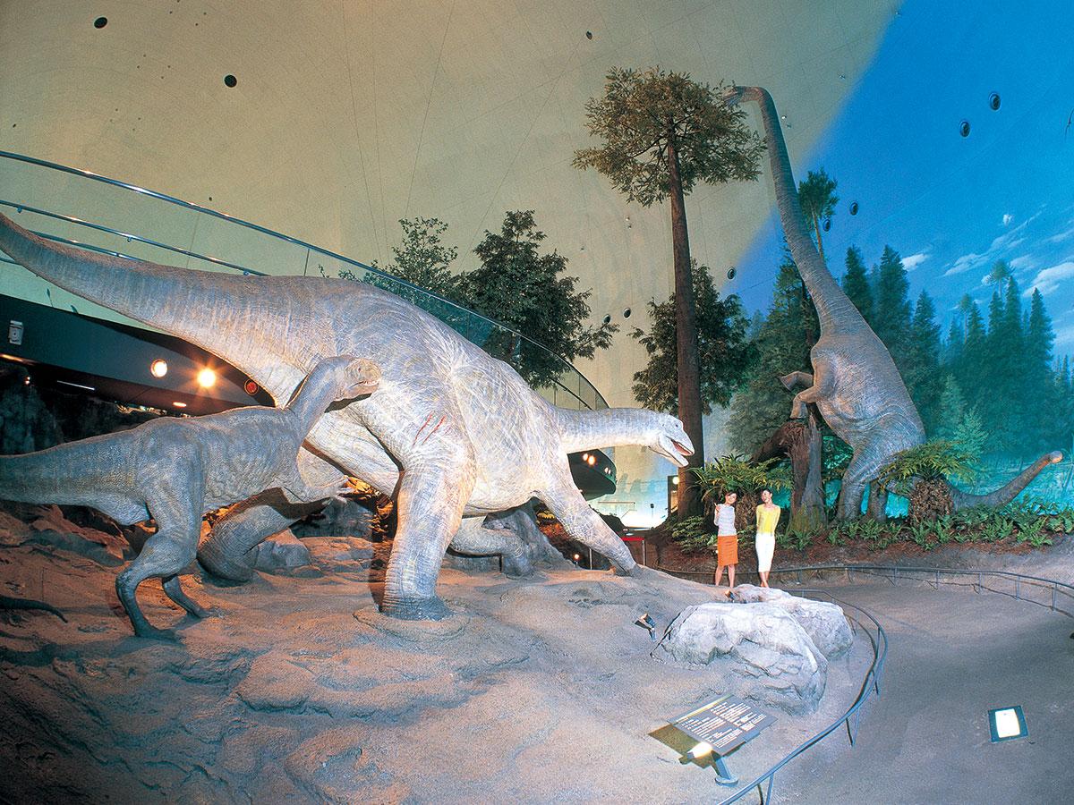 Musée préfectoral des dinosaures de Fukui_2
