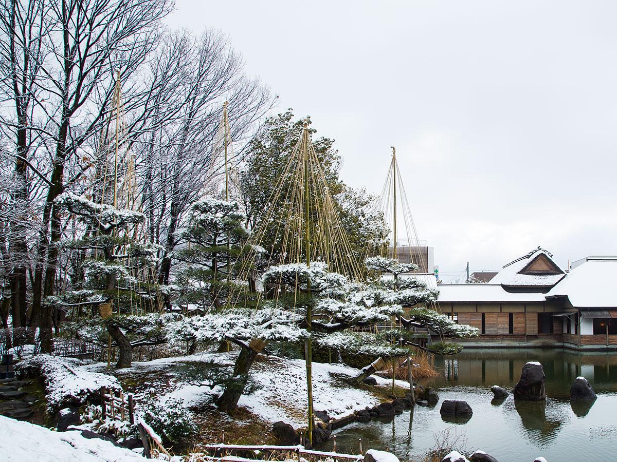 요코칸 정원_4